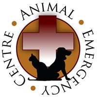 TrueCare for pets