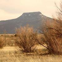 Salazar Ranches