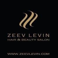 Zeev Levin זאב לוין