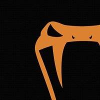 Copperhead CrossFit