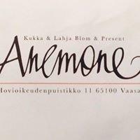 Kukka & Lahja Anemone