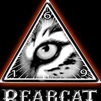 Bearcat Tattoo Gallery