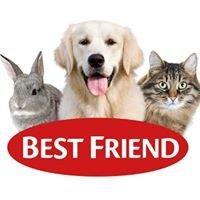 Best Friend DK