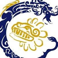 Internacional de Negocios Tai Ping Yang