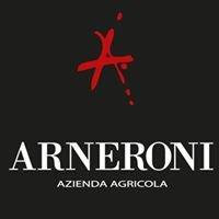 Agriturismo Arneroni