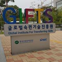 Global Institute for Transferring Skills