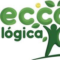 Ecco Lógica Ltda.