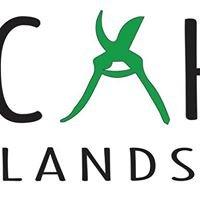 Cahill Landscaping LLC