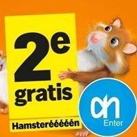 Albert Heijn Enter