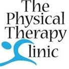 The Physical Therapy Clinic
