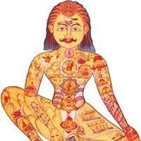 School van Ayurveda - Lies Ameeuw