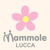 Le Mammole del Reparto Maternità Ospedale San Luca di Lucca