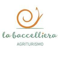 Agriturismo La Baccelliera