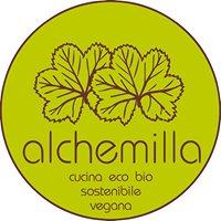 Alchemilla Bio