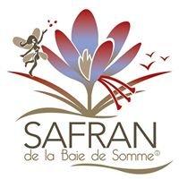 Safran de la Baie de Somme  Picardie Hauts de France