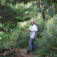 Wynne Farm Ecological Reserve / Reserve Ecologique Wynne Farm