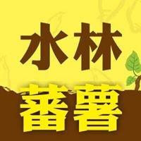 水林蕃薯文化季