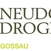 Neudorfdrogerie Gossau
