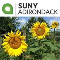 The Sustainable Food Project at SUNY Adirondack