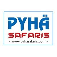 Pyhä Safaris