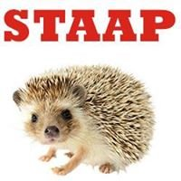 Staap