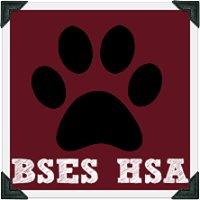 Bethel Springs Elementary School HSA