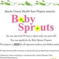 Apache County Health Start Program