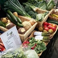 Lynton Farmers Market