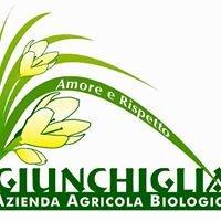 """Azienda Agricola Biologica """"Giunchiglia"""" di Siciliani Ivano"""