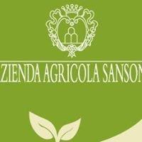 Azienda Agricola Biologica Sansoni
