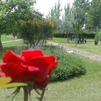 Arbustum Azienda Agrituristica