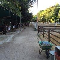 Centro Ippico Ranch Dallas