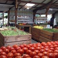 Spicknall's Farm Market