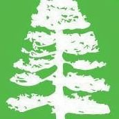 Sequoia pressing Lyon 4