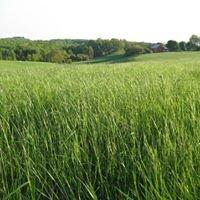 Killdeer Valley Farm