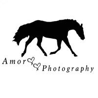 Amor Photography