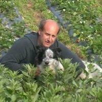 Azienda Agricola Biologica Paolo e Gisella