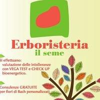 IL SEME Erboristeria&Bioprofumeria