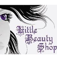 Little Beauty Shop