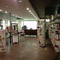 Farmacia Bechi