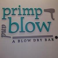 Primp and Blow-A Blow Dry Bar