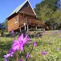 A Stones Throw Accommodation, Grahamstown, Eastern Cape