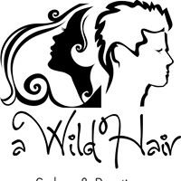 A Wild Hair Salon & Boutique