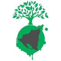 Organización Nicaragüense Ambiental