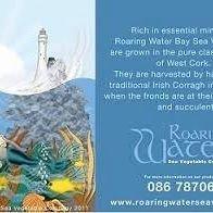 Roaring Water Sea Vegetables