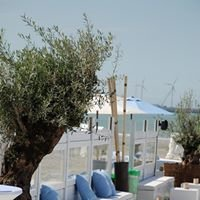 Blue Marlin Knokke Beach and Cafe-Lounge