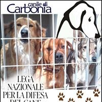 Lega Del Cane Carbonia