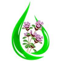 Mark P. Jack MNIMH - Medical Herbalist