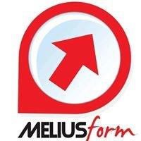 MELIUSform Business School