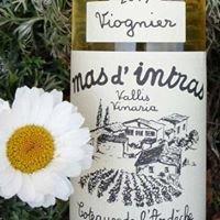 Mas d'Intras - Domaine viticole familial